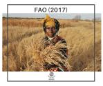 FAO (2017)